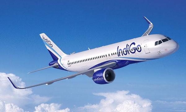 IndiGo signs MoU for 250 A320neo aircraft